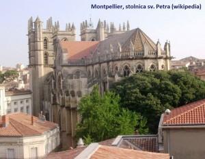 06_Montpellier_Saint_Pierre_wiki